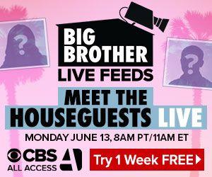 meet-the-houseguests_300x250